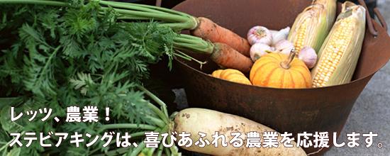 レッツ、農業!ステビアキングは、喜びあふれる農業を応援します。